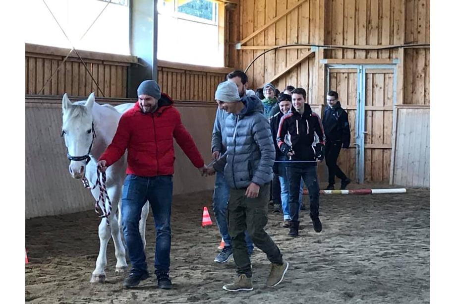 pferdegestütztes Coaching Führung