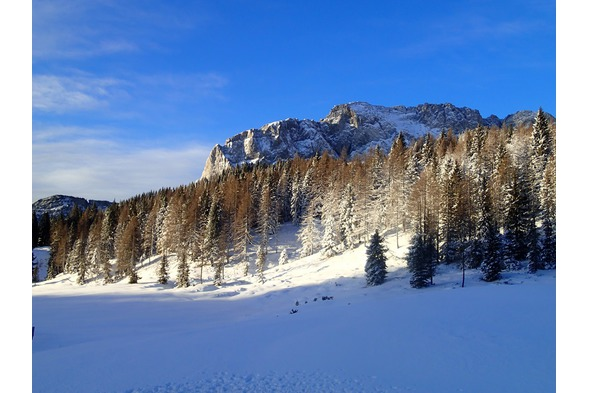 Skifahren Nassfeld, Plattner,Winter4