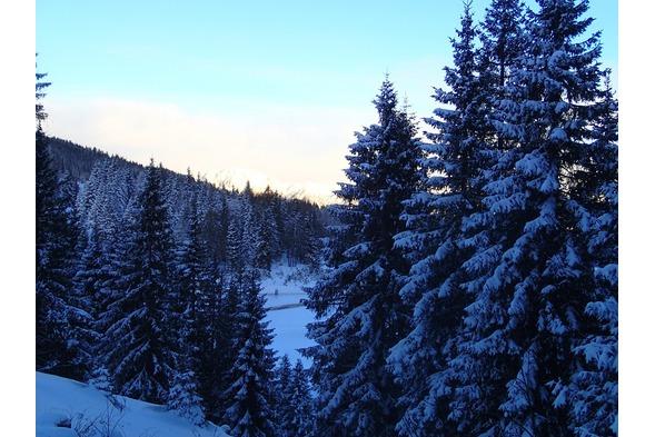 Skifahren Nassfeld, Plattner,Winter1