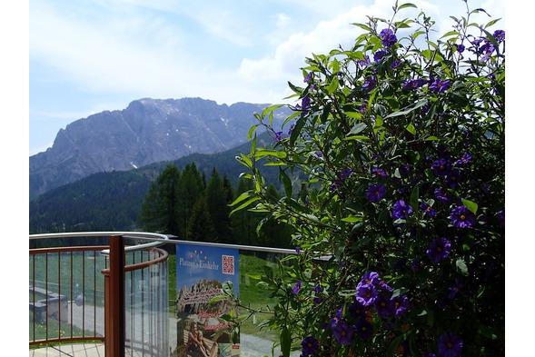 Plattner, Nassfeld, Wandern, Sommerfrische 2