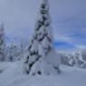 Plattner, Nassfeld, Neuschnee, Ski 6