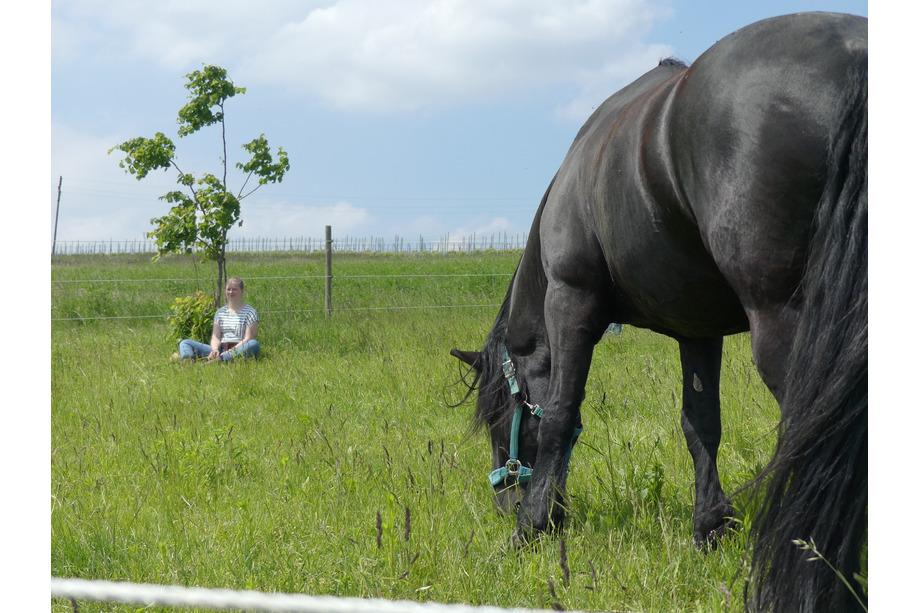 Maria Bewusstseinsarbeit mit Pferd