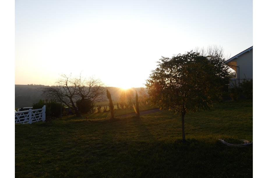 Blick in Weingarten