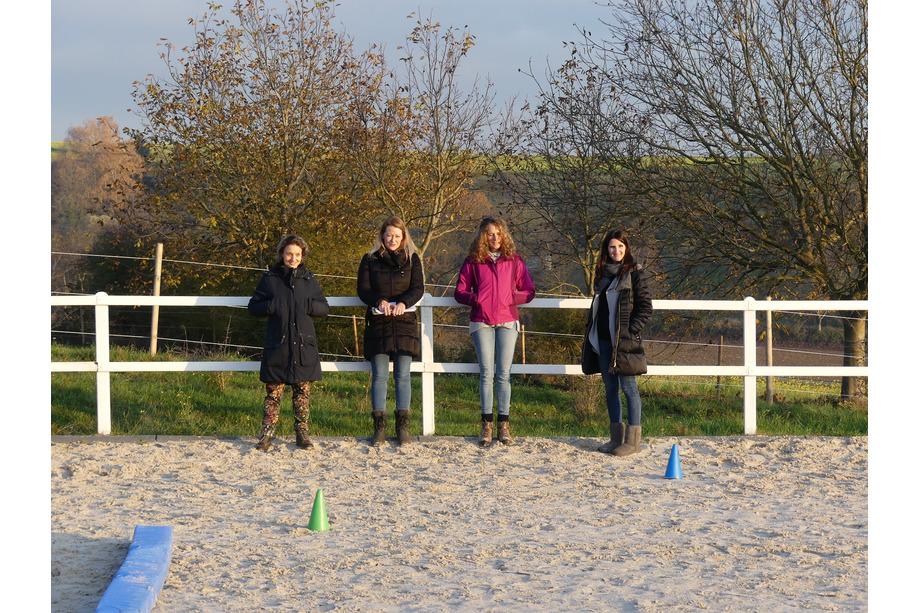Teilnehmer des Pferdecoachings