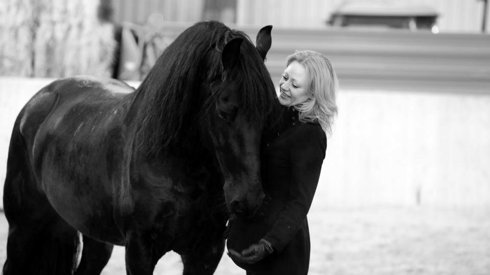 Beziehung zwischen Mensch und Pferd