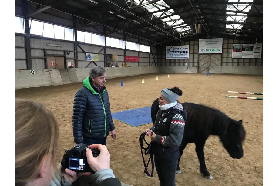 Videoaufnahme im Pferdecoaching