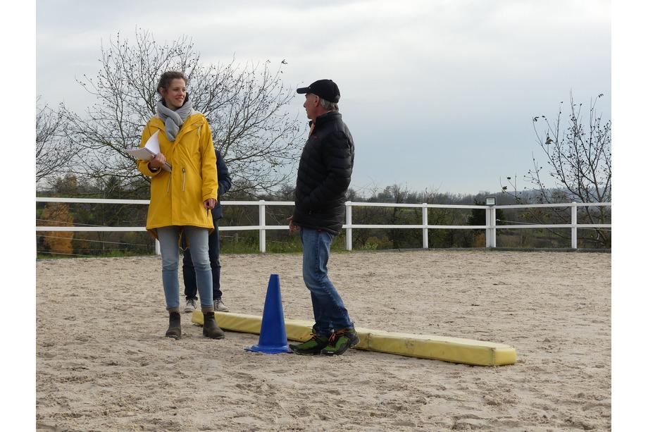 Aufstellungsformat Pferdegestütztes Coaching