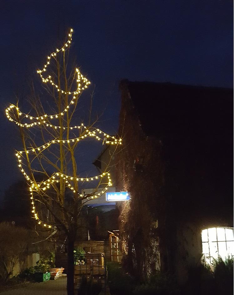 Weihnachten Niermann