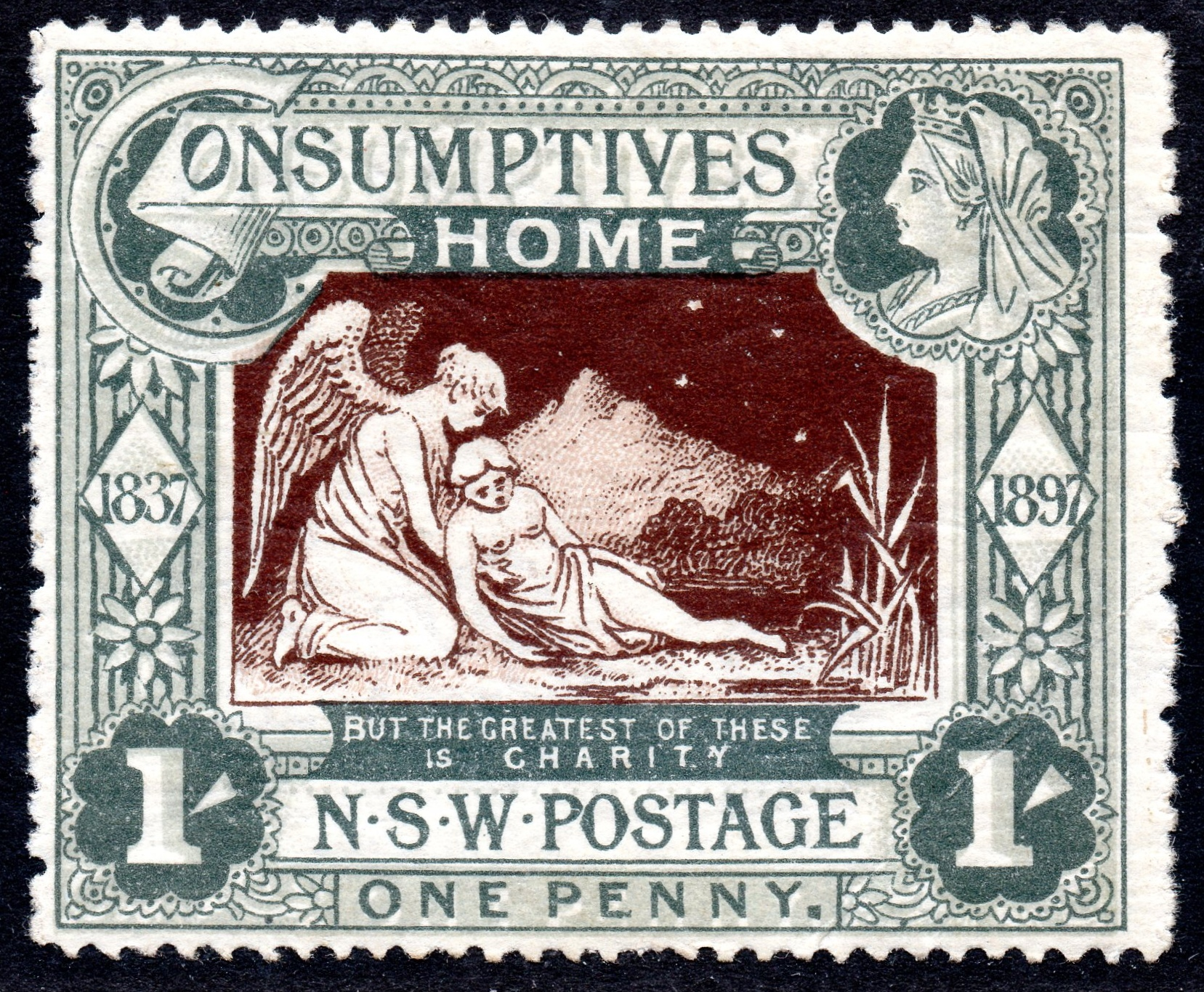 Australia New South Wales 1897 Consumptive Homes 1s Fresh Mounted Mint SG280 - SOLD