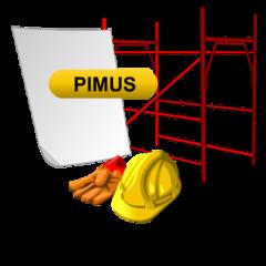 PiMUS online