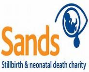 SANDS VIRTUAL RUN