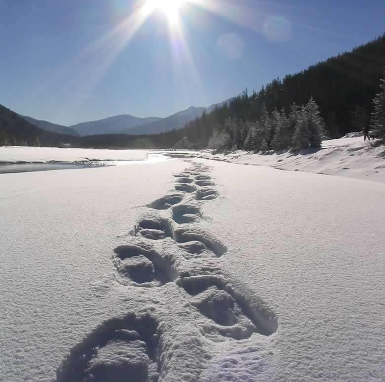 Geführte Schneeschuh-Wanderungen