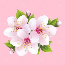 Florist's Choice <3