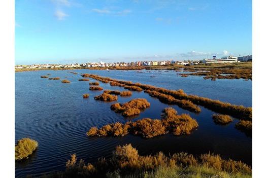 photo_of_salinas_at_vera_playa