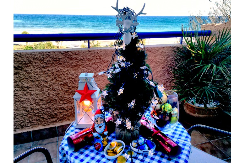 photo_of_christmas_tree_with_sea_and_beach_in_back