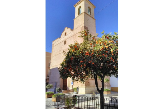photo_of_vera_town_church_and_orange_tree