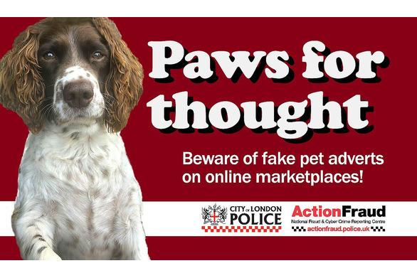 Pet fraud warning
