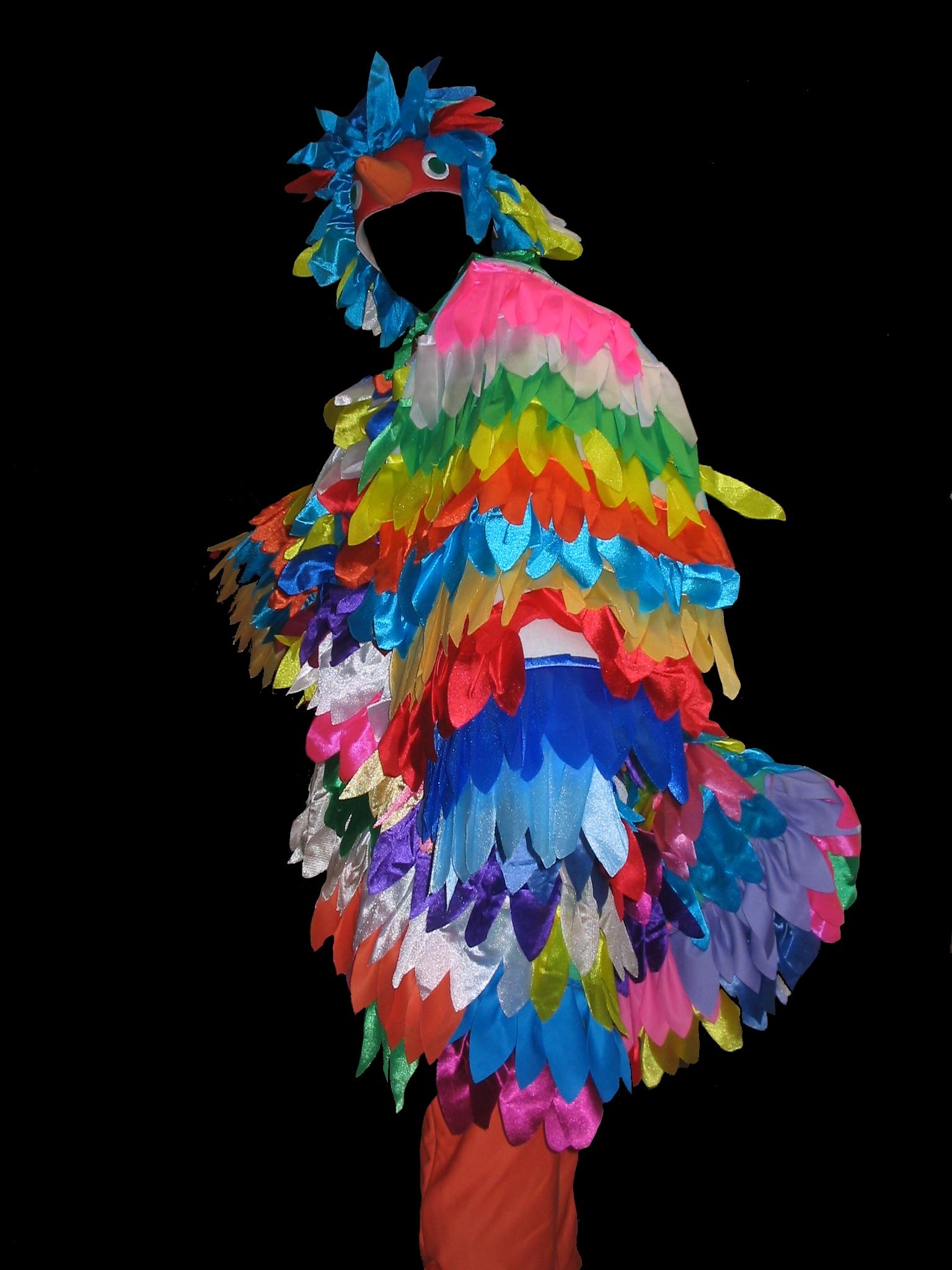Pappagallo Multicolore