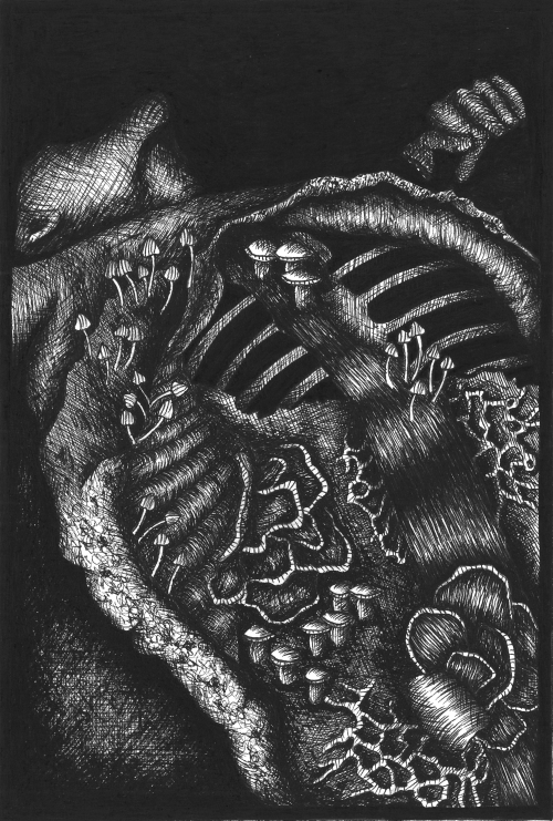 """Das Schwarze Holz"" Art Print"