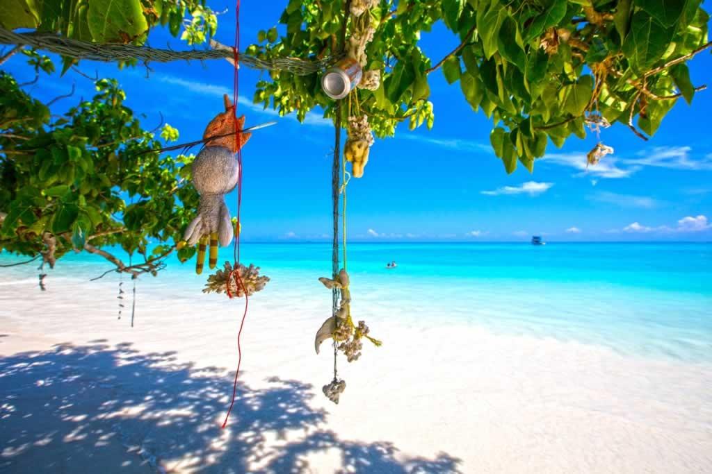 SIIMILAN ISLANDS TOUR 2G + 1N