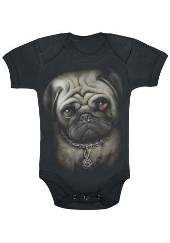 Pug Life, Body Bebé