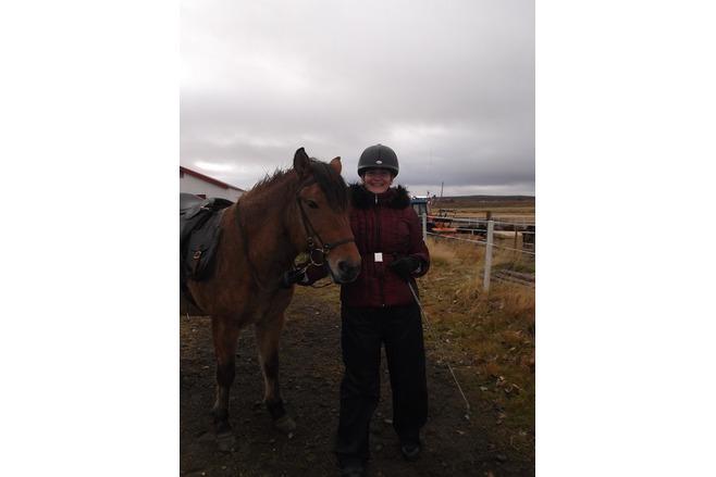 The Horse Riding Tourist