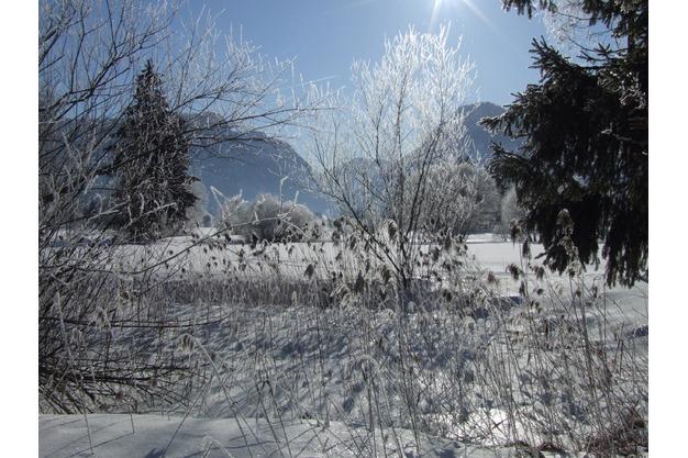 Inzeller Winter