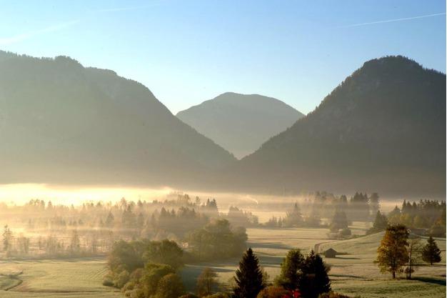 Alpendunst