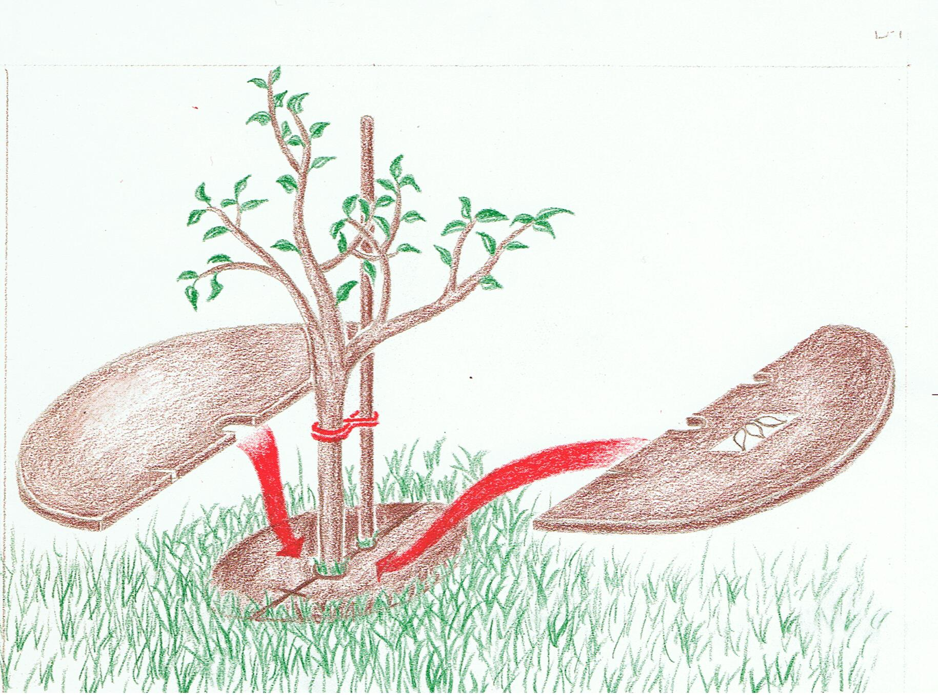 BIHUTHERM Baumschutzscheibe