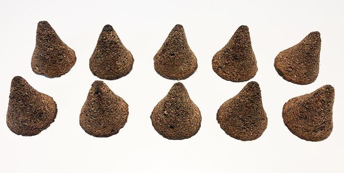 10 Pine Sage Incense Cones
