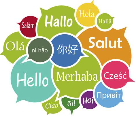 Warum ein Multi-Sprachenjahr machen?