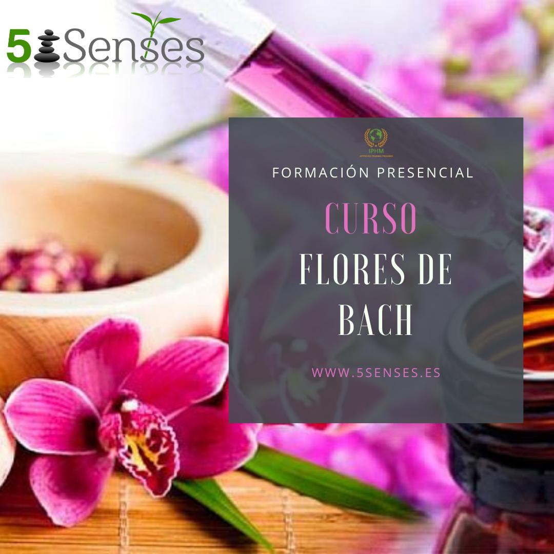 Curso - Flores de Bach