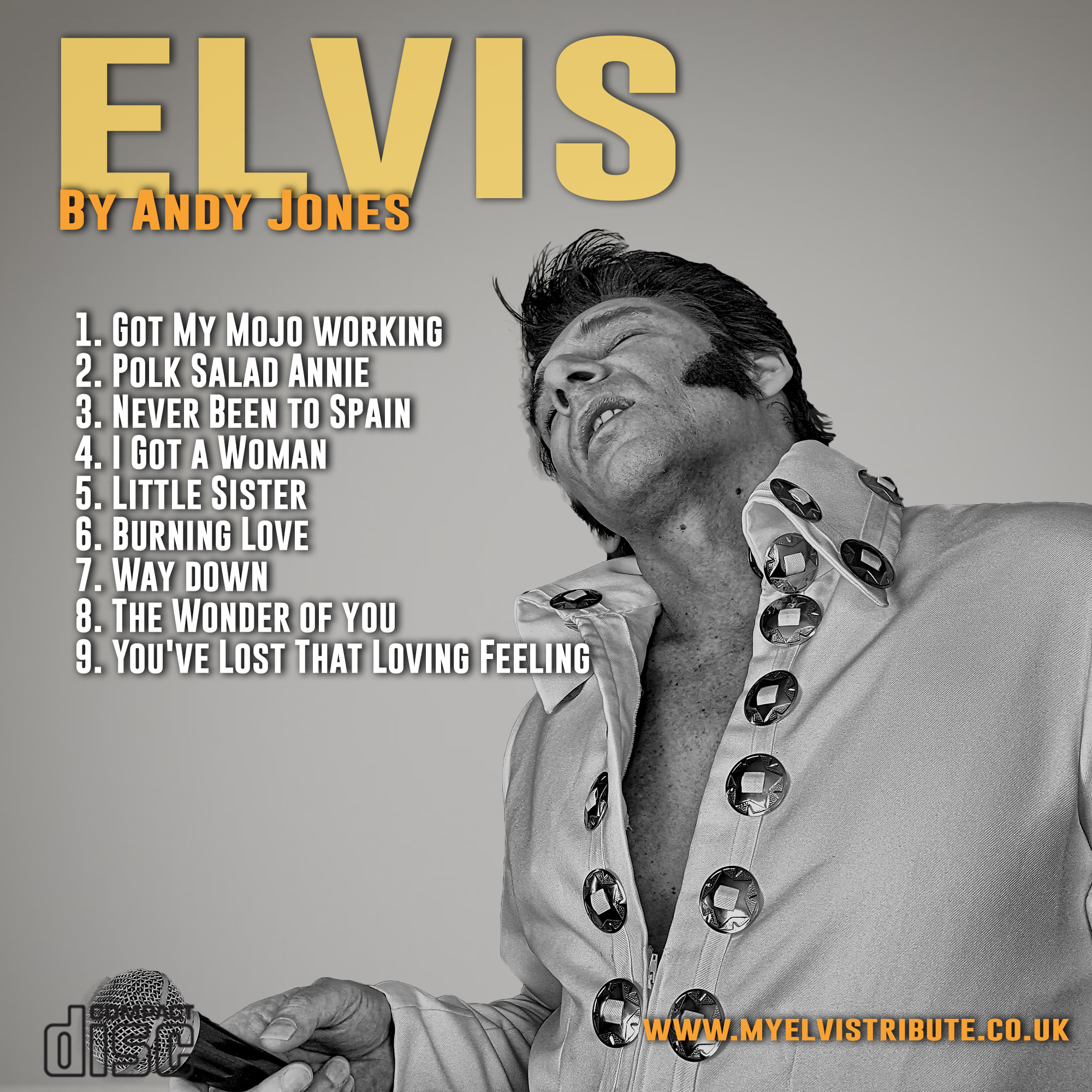 Elvis By Andy Got My Mojo Working