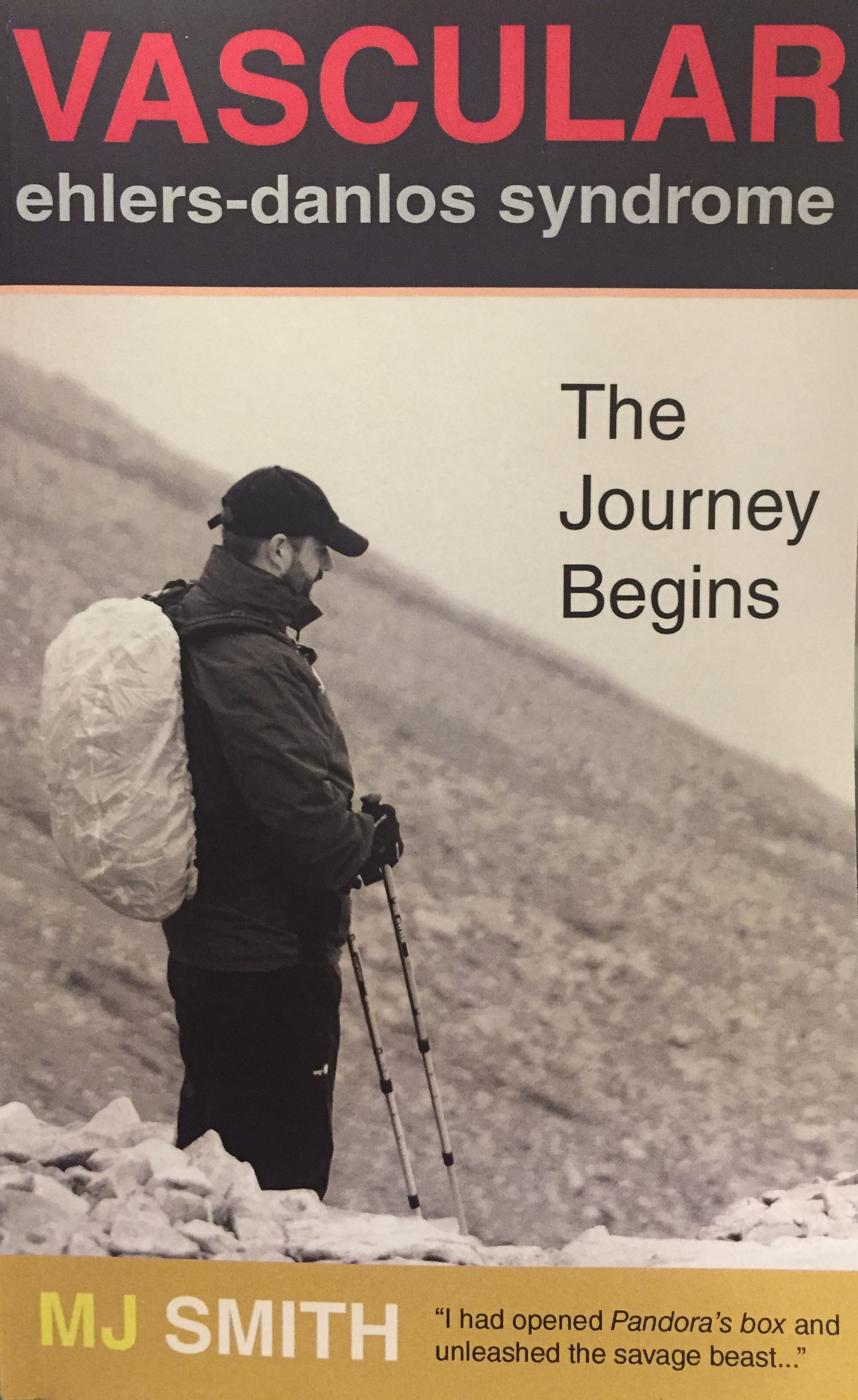 The Journey Begins - Paperback by M J Smith