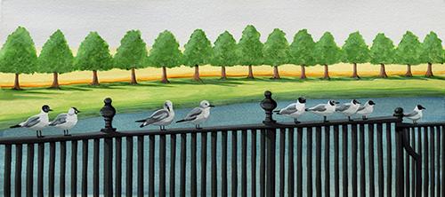 Seagulls at Hampton Court