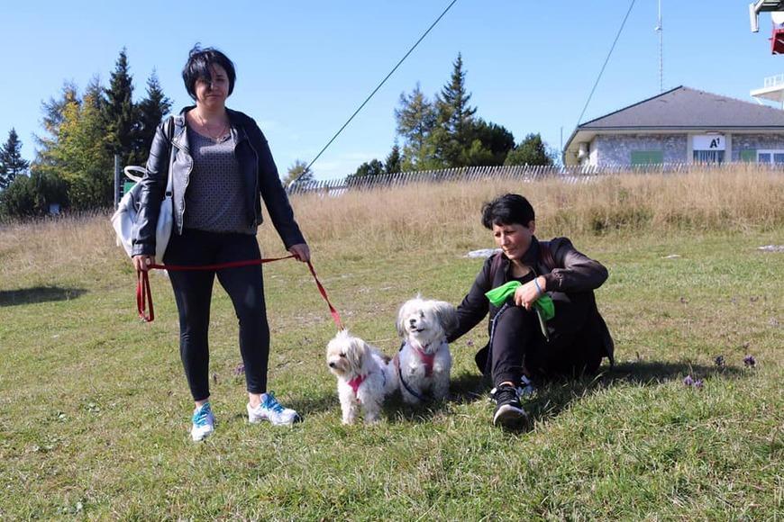 Schöcklwanderung mit Hund