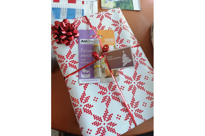 Weihnachtsgeschenke Arche Noah