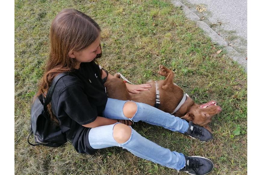 Streicheleinheiten für Tierheimhund Naila