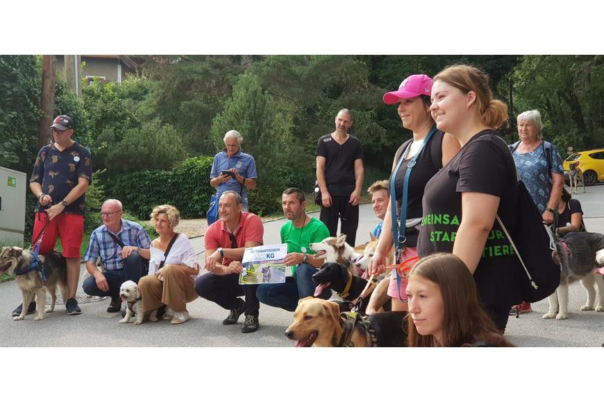 Gruppenbild Hundewandertag