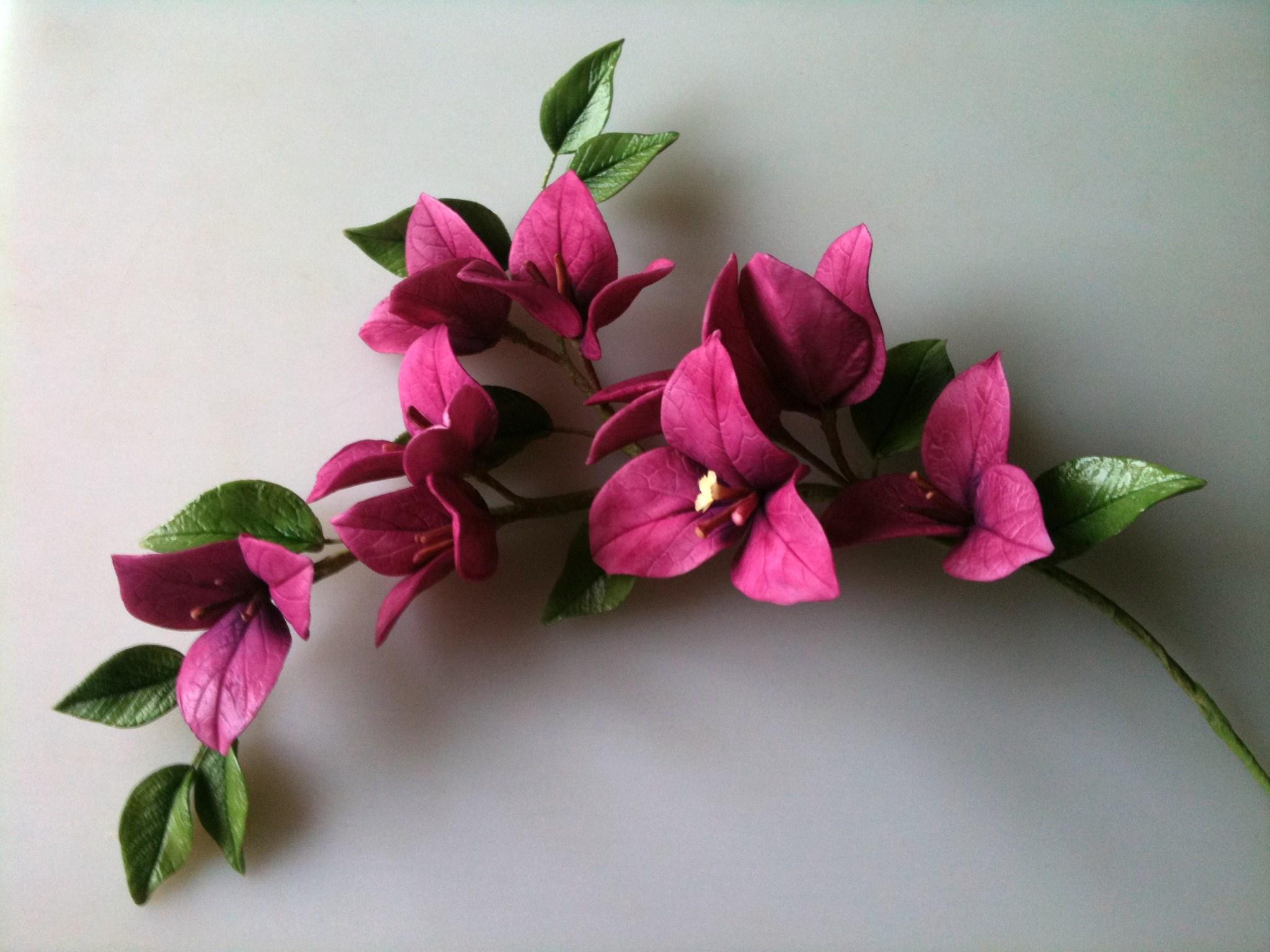 Atelier fleurs en sucre