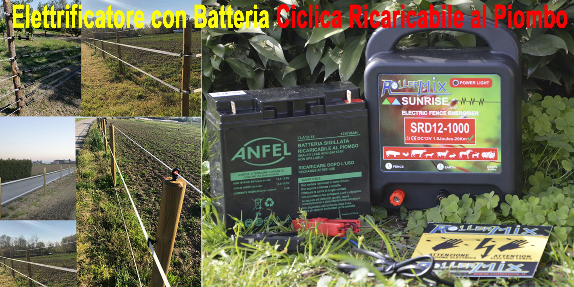 Elettrificatore con Batteria e Carica Batterie