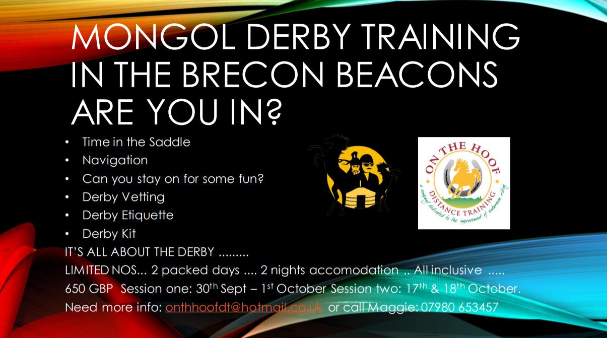 Mongol Derby Training