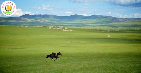 WEBINAR: Mongol Derby