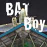 BAT Boy Cover mit Flugzeug 2