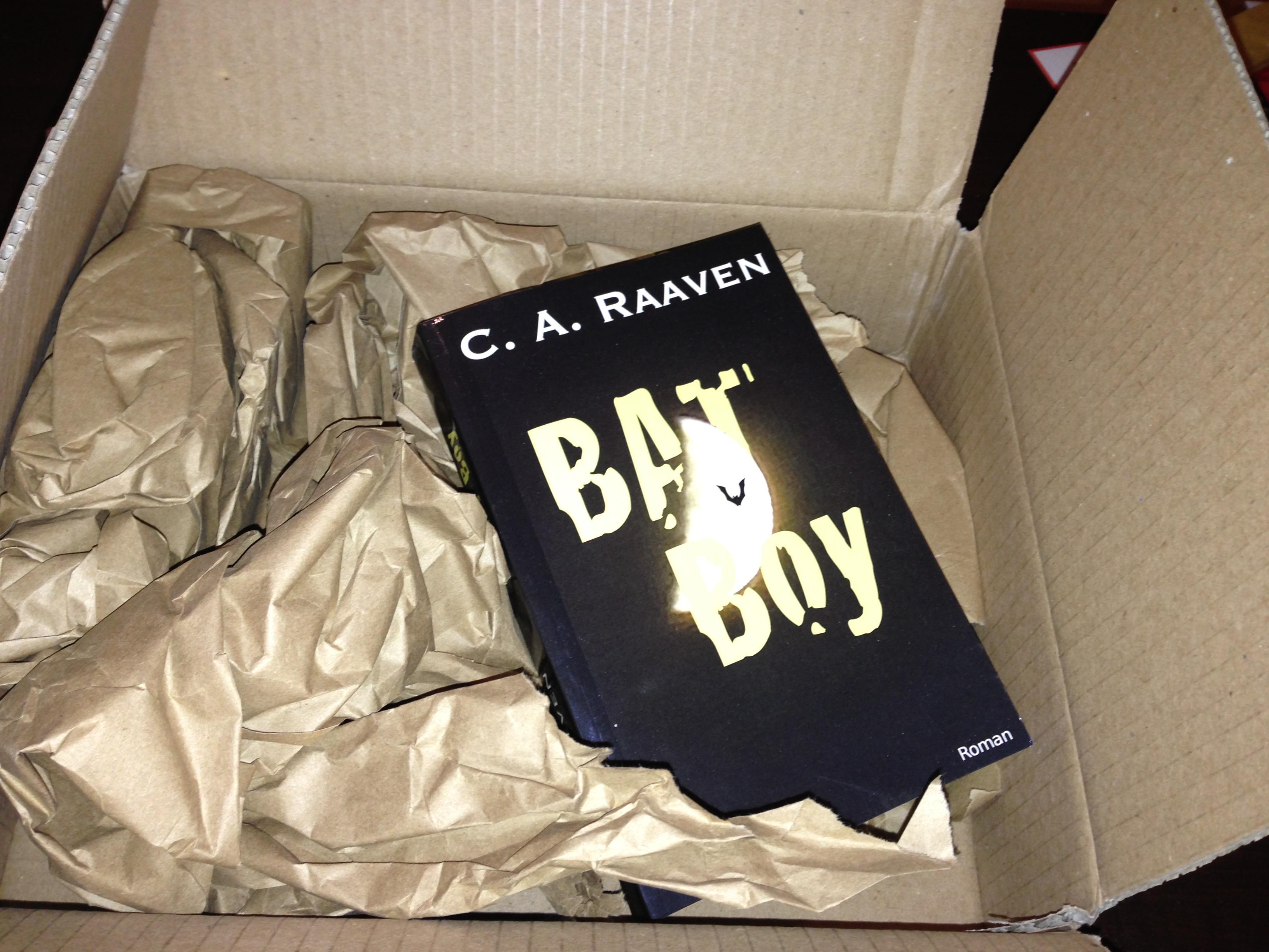 BAT Boy 1 als Paperback