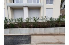 Toric Bau - Gestaltung Außenanlage