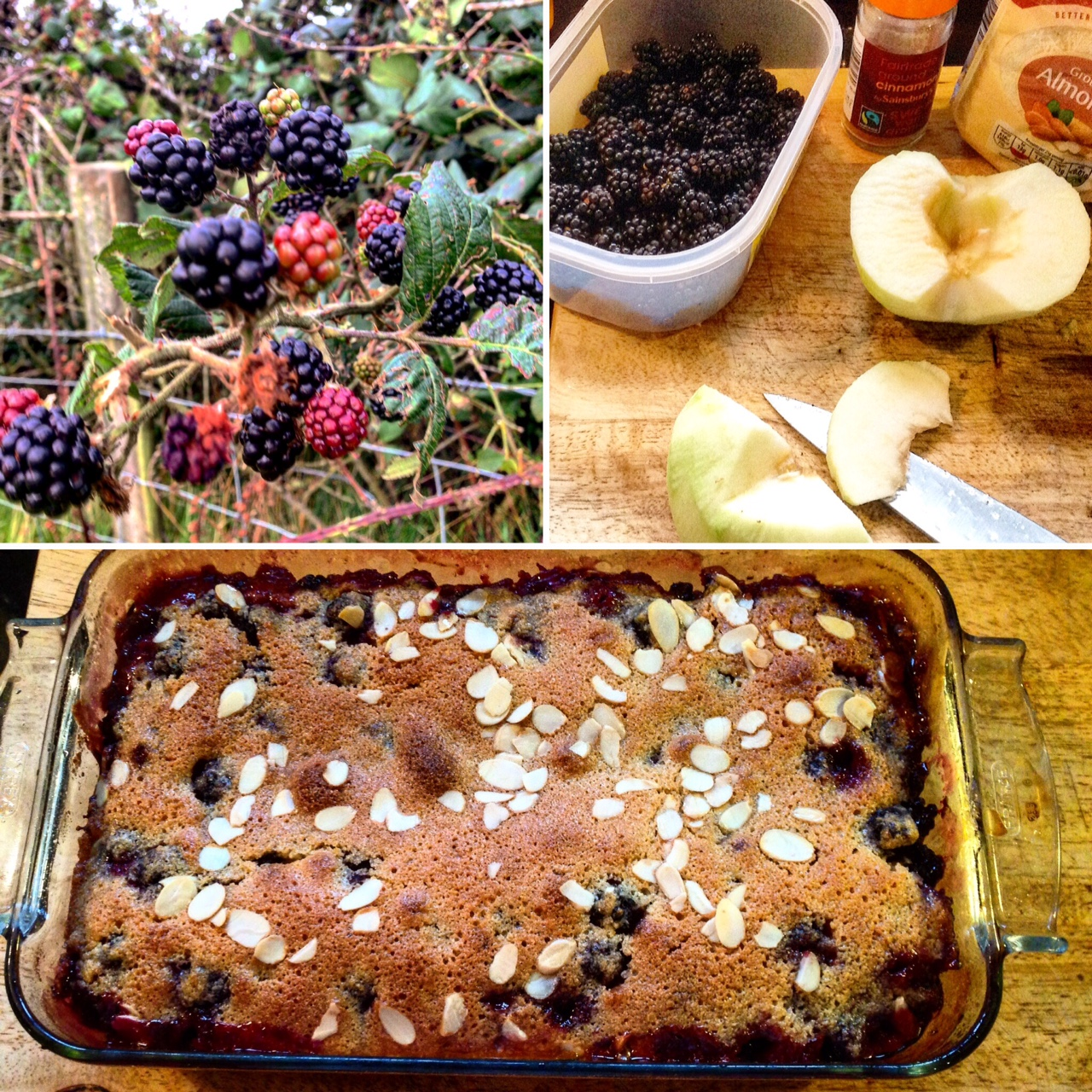 Bramble & Apple Bake Recipe