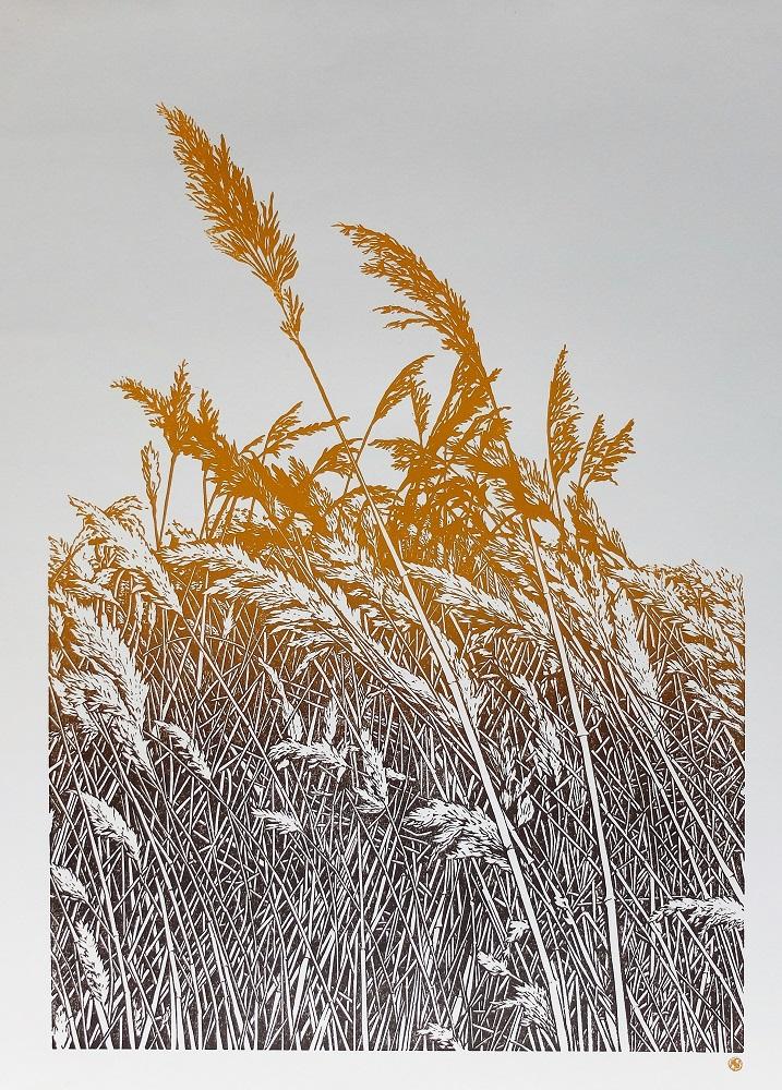 The Long Grass (version 3)