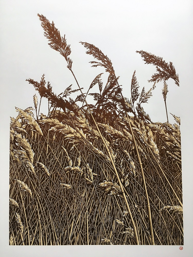 The Long Grass (version 2)