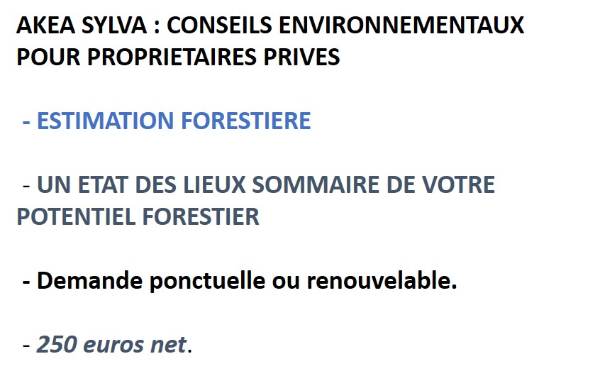 AKEA-NIVEAU-A-ESTIMATION-FORESTIERE